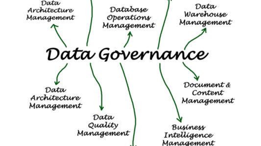 Representation of data governance in the pharmaceutical consulting